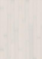 Бук Белое сияние